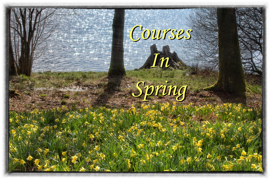 a photograph of daffodils with the words courses for Spring overlaid